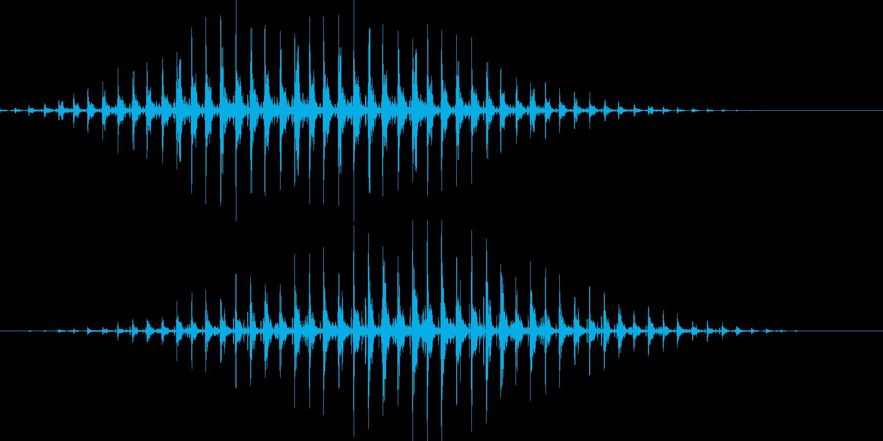 「リンリンリンリン♪」の再生済みの波形