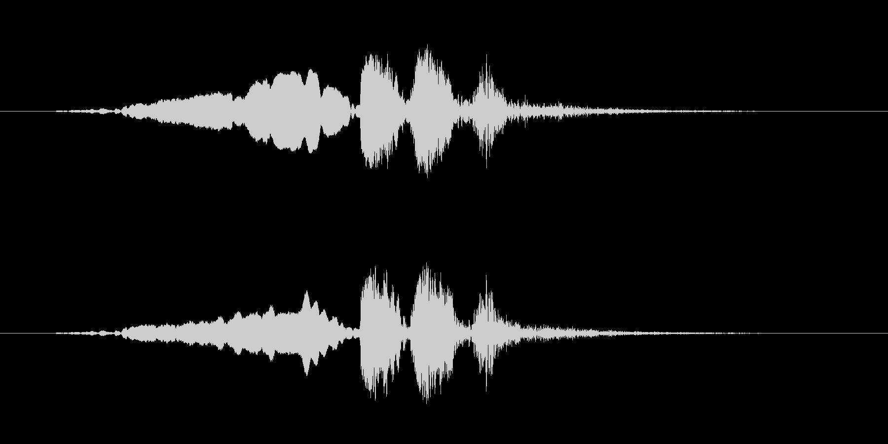 【ウグイス 合成01-2】の未再生の波形