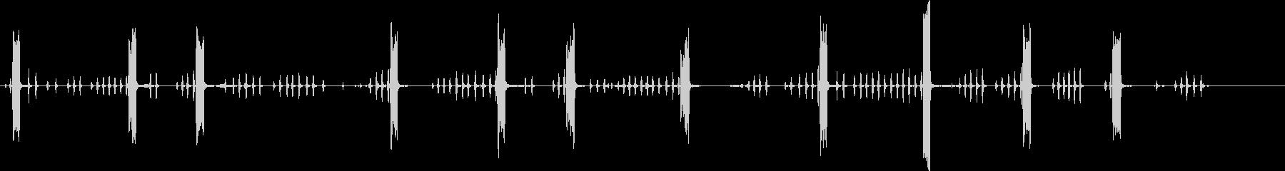 鶏の鳴き声。鶏の鳴き声。の未再生の波形