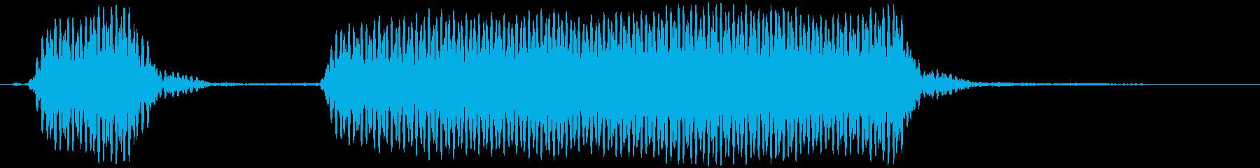 汽笛 ホッホーッの再生済みの波形