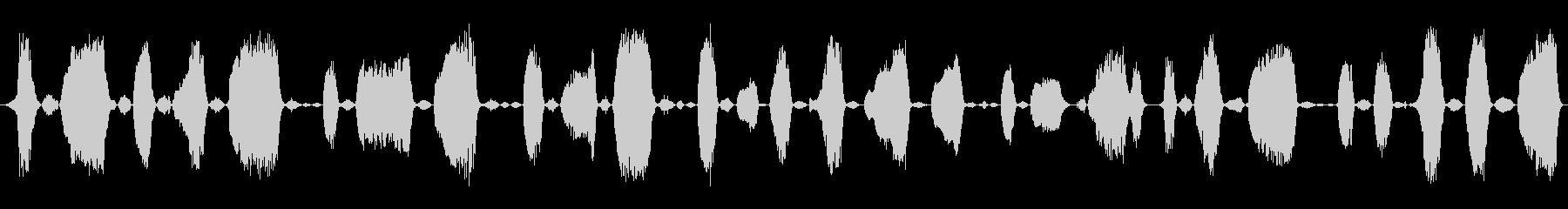 成人男性:苦労するうなり声の未再生の波形