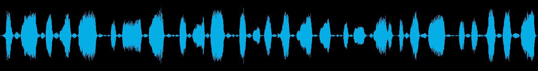 成人男性:苦労するうなり声の再生済みの波形