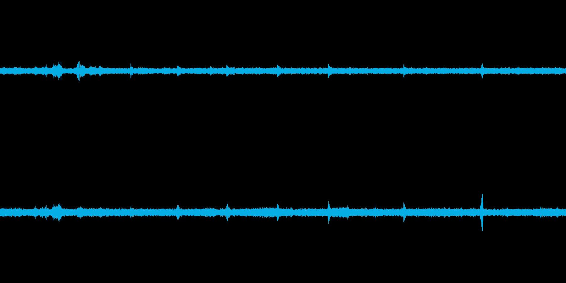 【環境音】熱帯の鳥(密林の朝)の再生済みの波形
