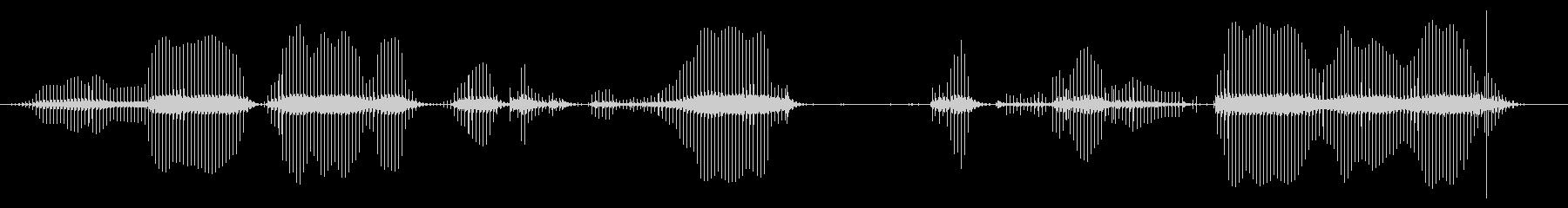 アンプハム:長い壊れた静的バーストの未再生の波形