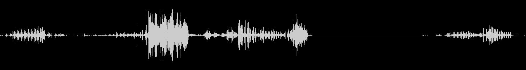 ピットブルドッグうがい、複数の未再生の波形