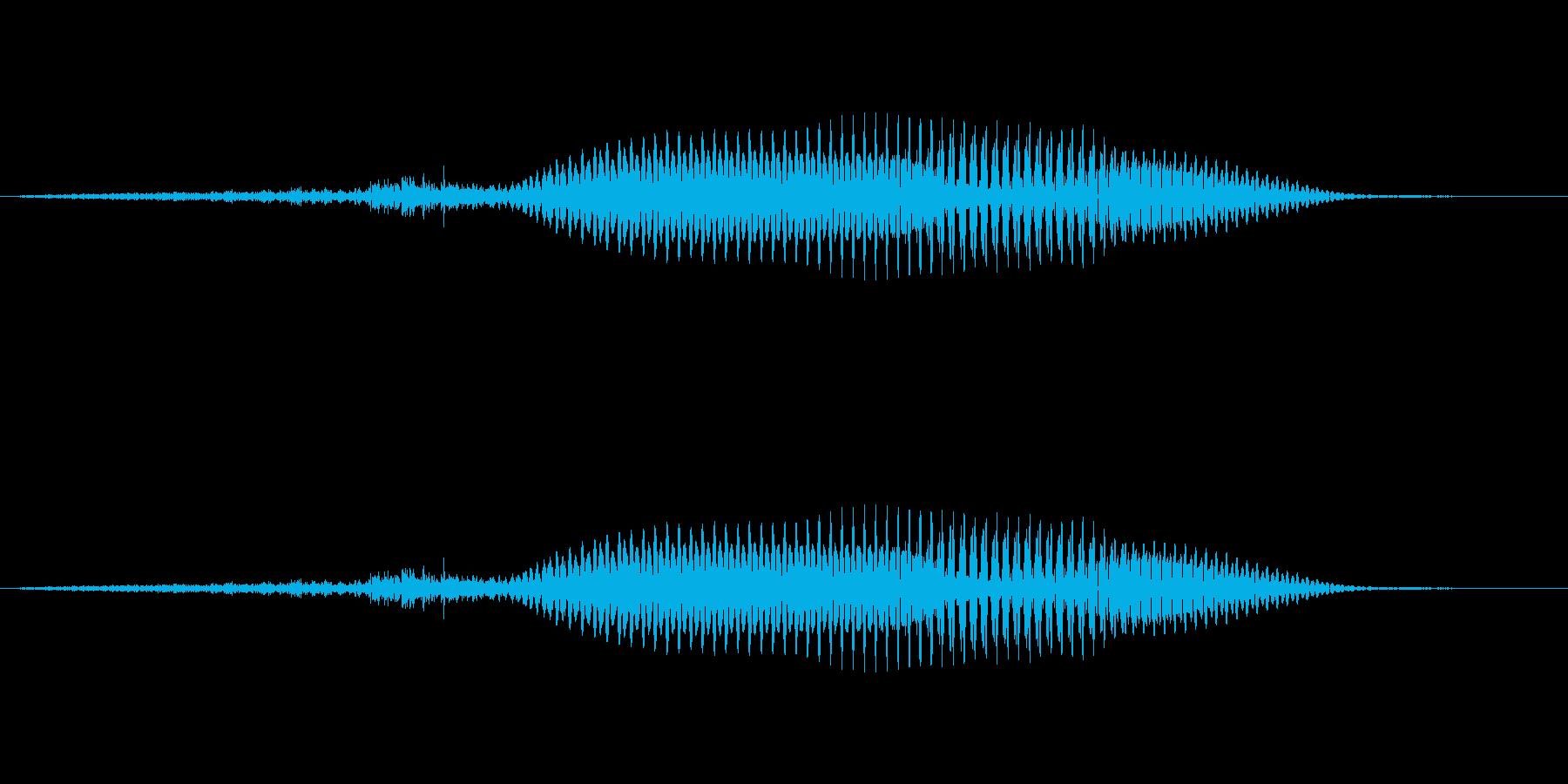 (女性)ドイツ語 数字4 フィーアの再生済みの波形