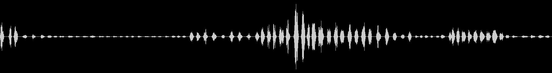 発情期のオス猫の鳴き声の未再生の波形