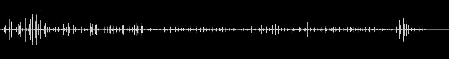 チキンチキン-エンガリネロ-パハロの未再生の波形