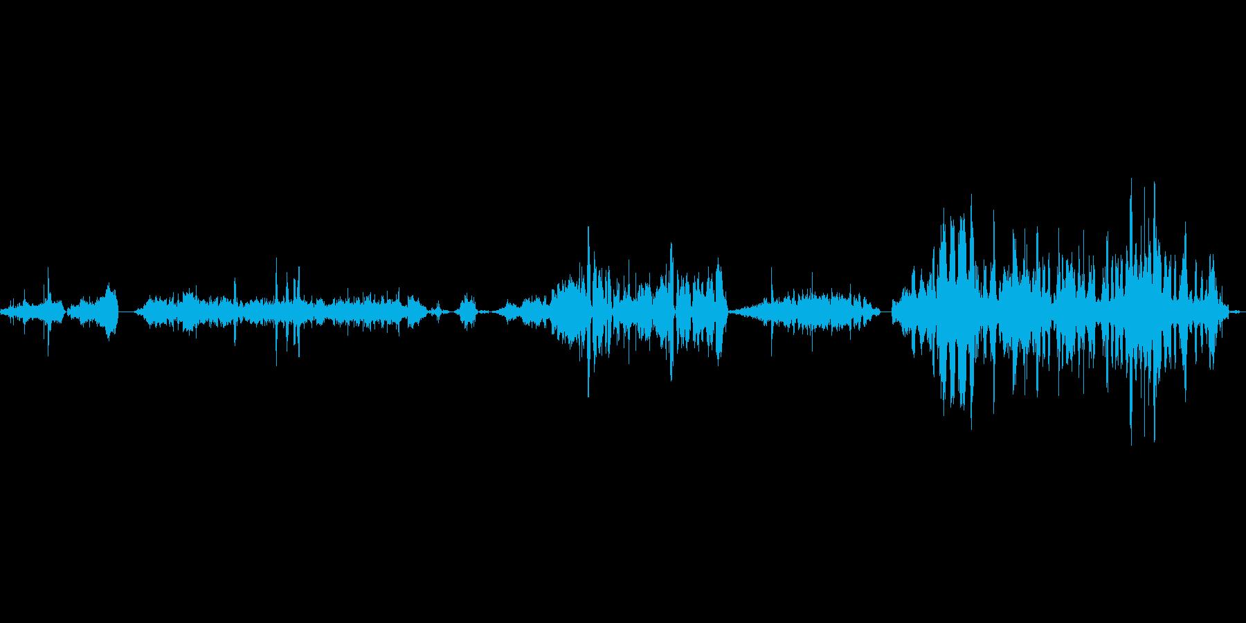 昆虫の羽ミディアムバグの再現の再生済みの波形