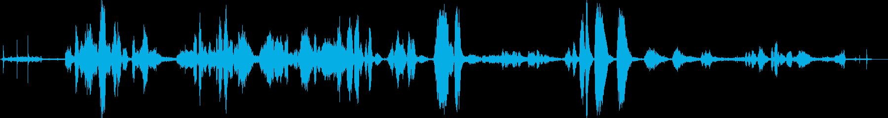 Victrola;クリックして、ス...の再生済みの波形