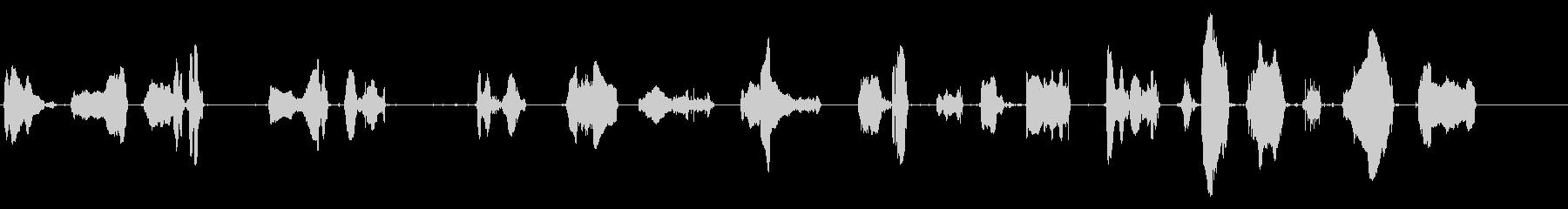 カモメ4の未再生の波形