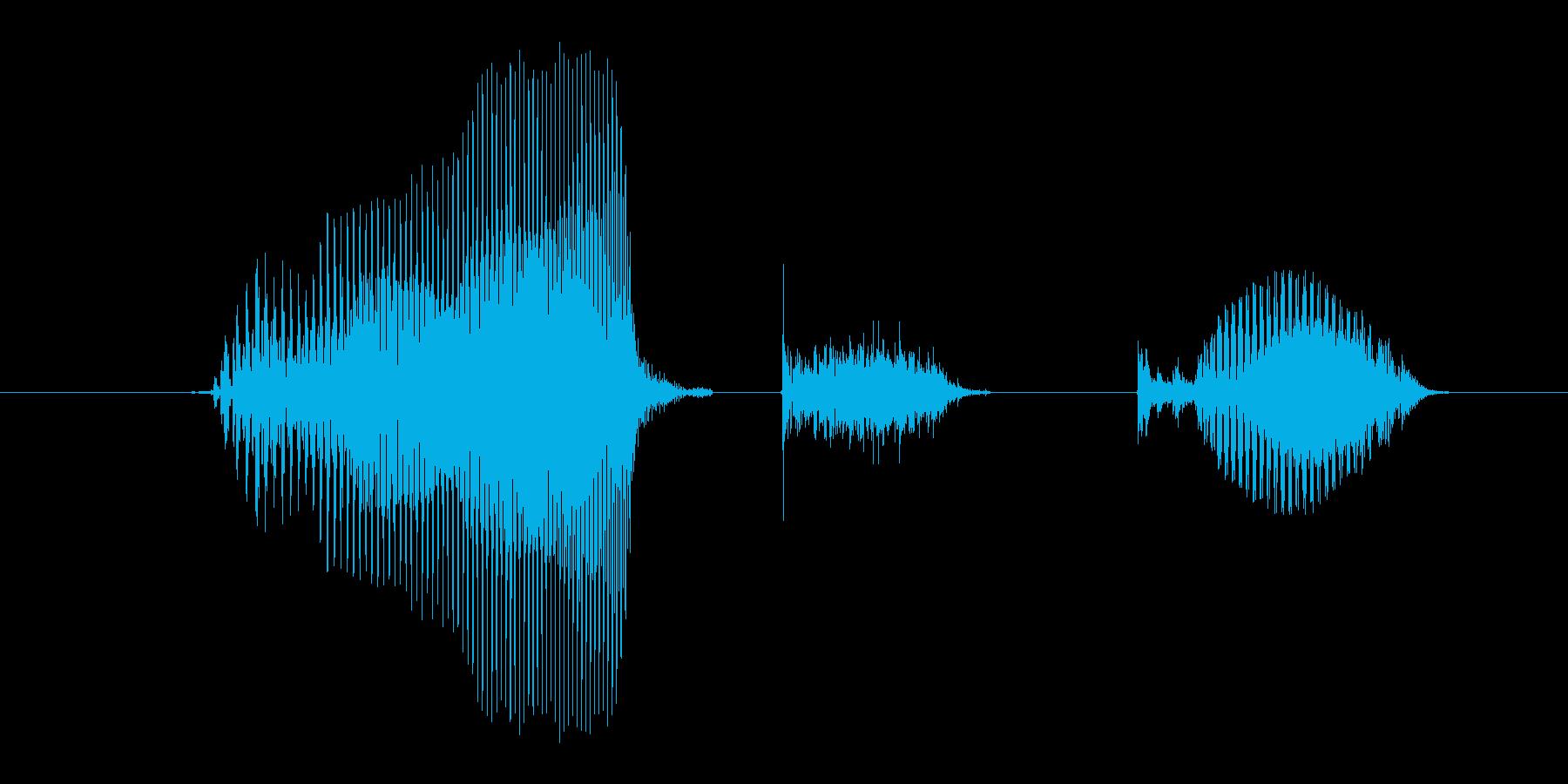 大きくの再生済みの波形