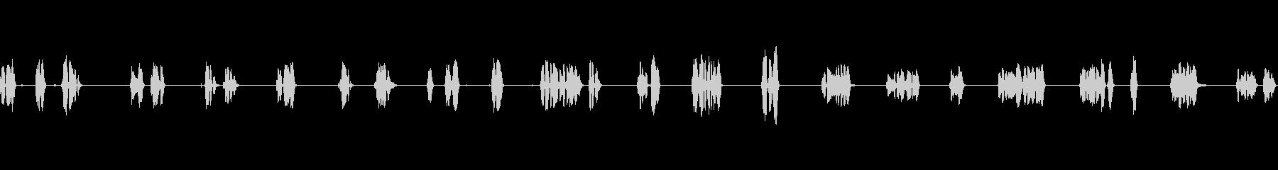 アメリカンインディアンスピーキング...の未再生の波形