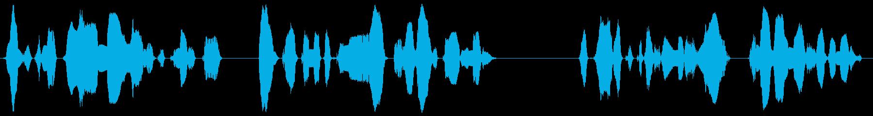 本日の公演内容につきましてアンケートの…の再生済みの波形