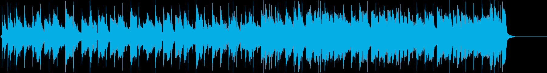 ブルース・ロック・インストゥルメン...の再生済みの波形