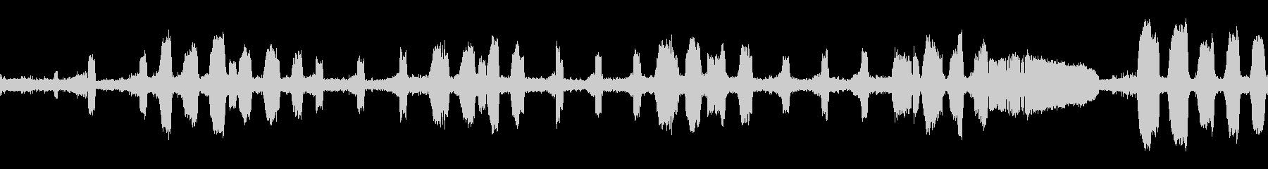 ツクツクボウシ・蝉の鳴き声(ループ)の未再生の波形