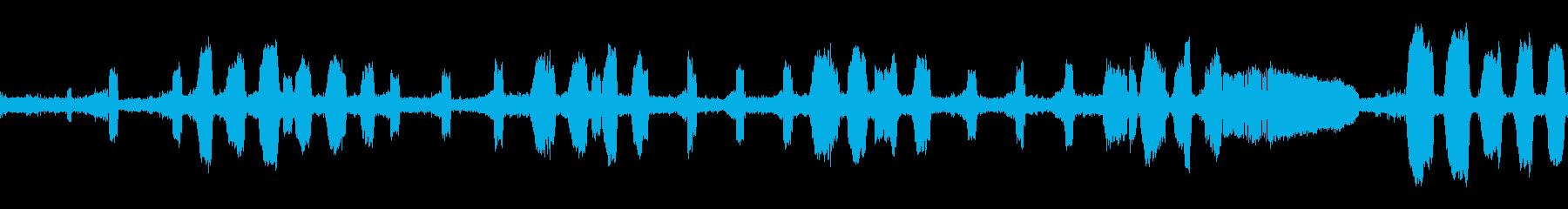 ツクツクボウシ・蝉の鳴き声(ループ)の再生済みの波形