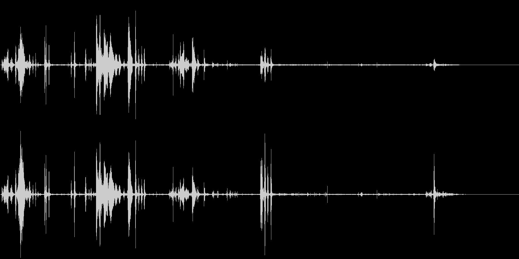 野犬-アウトドアの未再生の波形