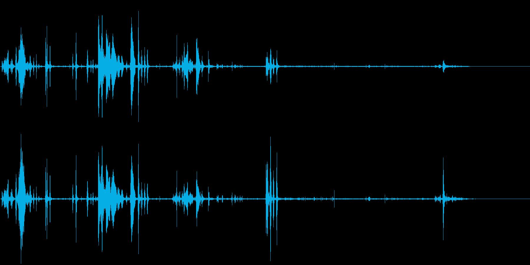 野犬-アウトドアの再生済みの波形