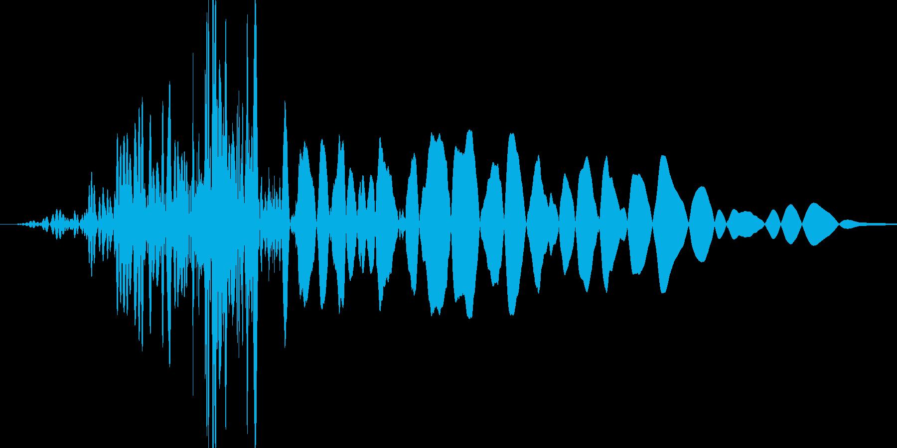 ボフッ(短い風切り音が入っている打撃音)の再生済みの波形
