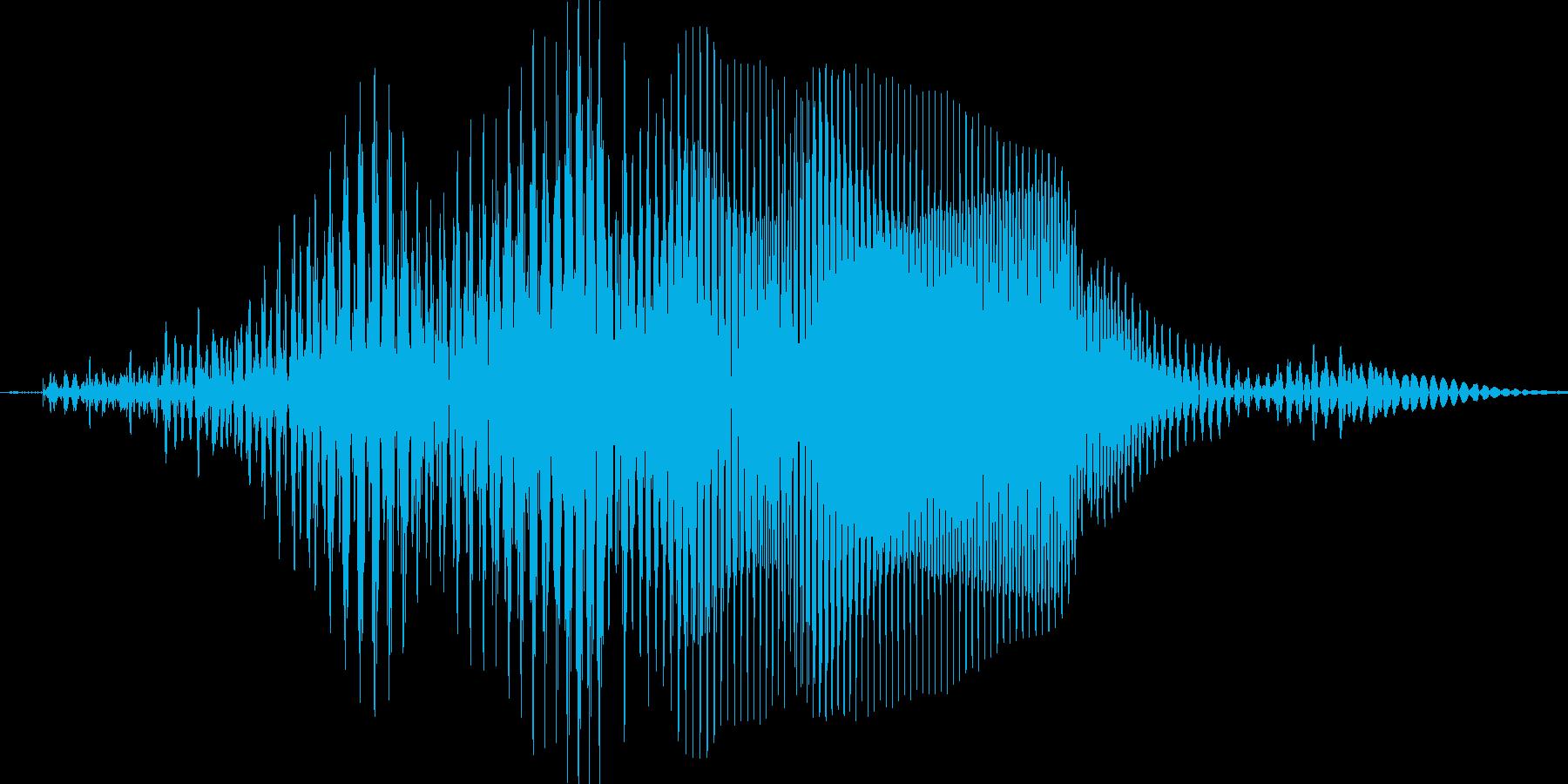 ポンの再生済みの波形