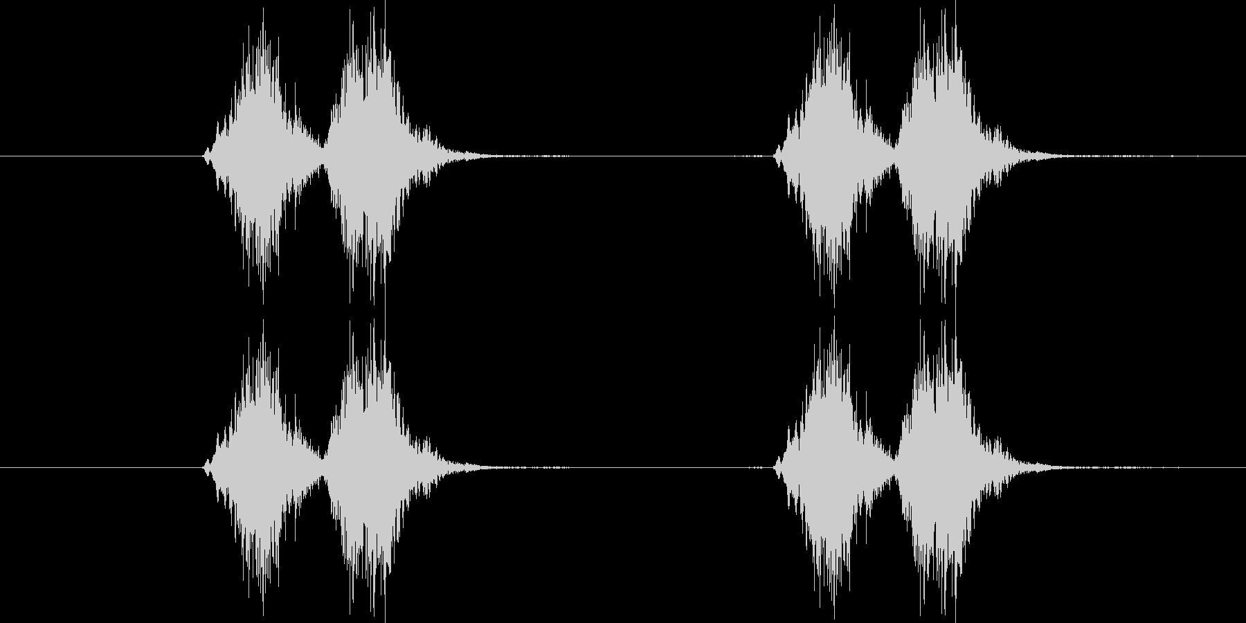コザクラインコが呼応する鳴き声の音の未再生の波形