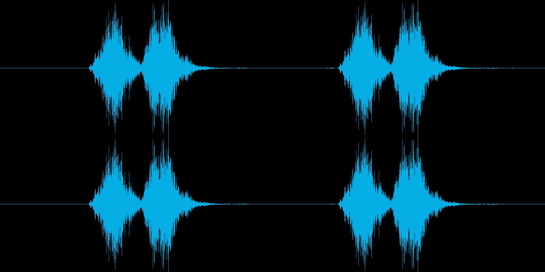 コザクラインコが呼応する鳴き声の音の再生済みの波形