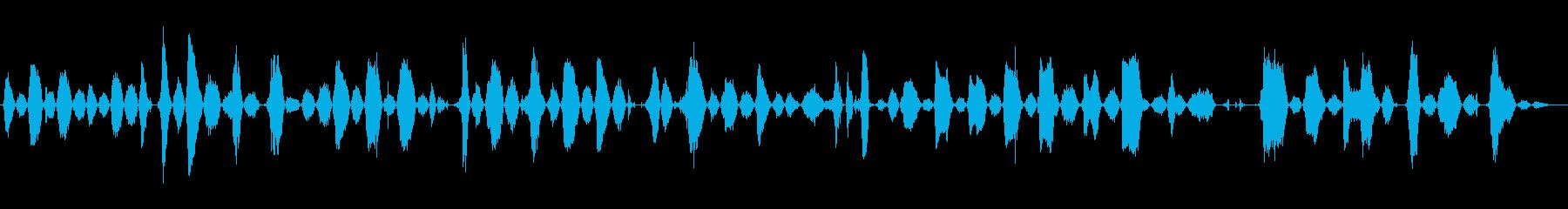 成人男性:痛みを伴う呼吸と喘ぎの再生済みの波形