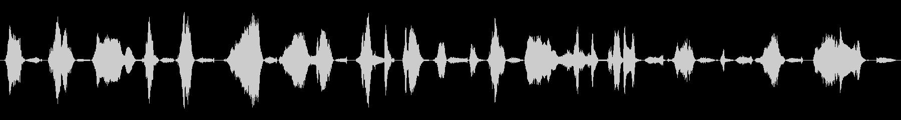 成人女性:苦労するうなり声の未再生の波形