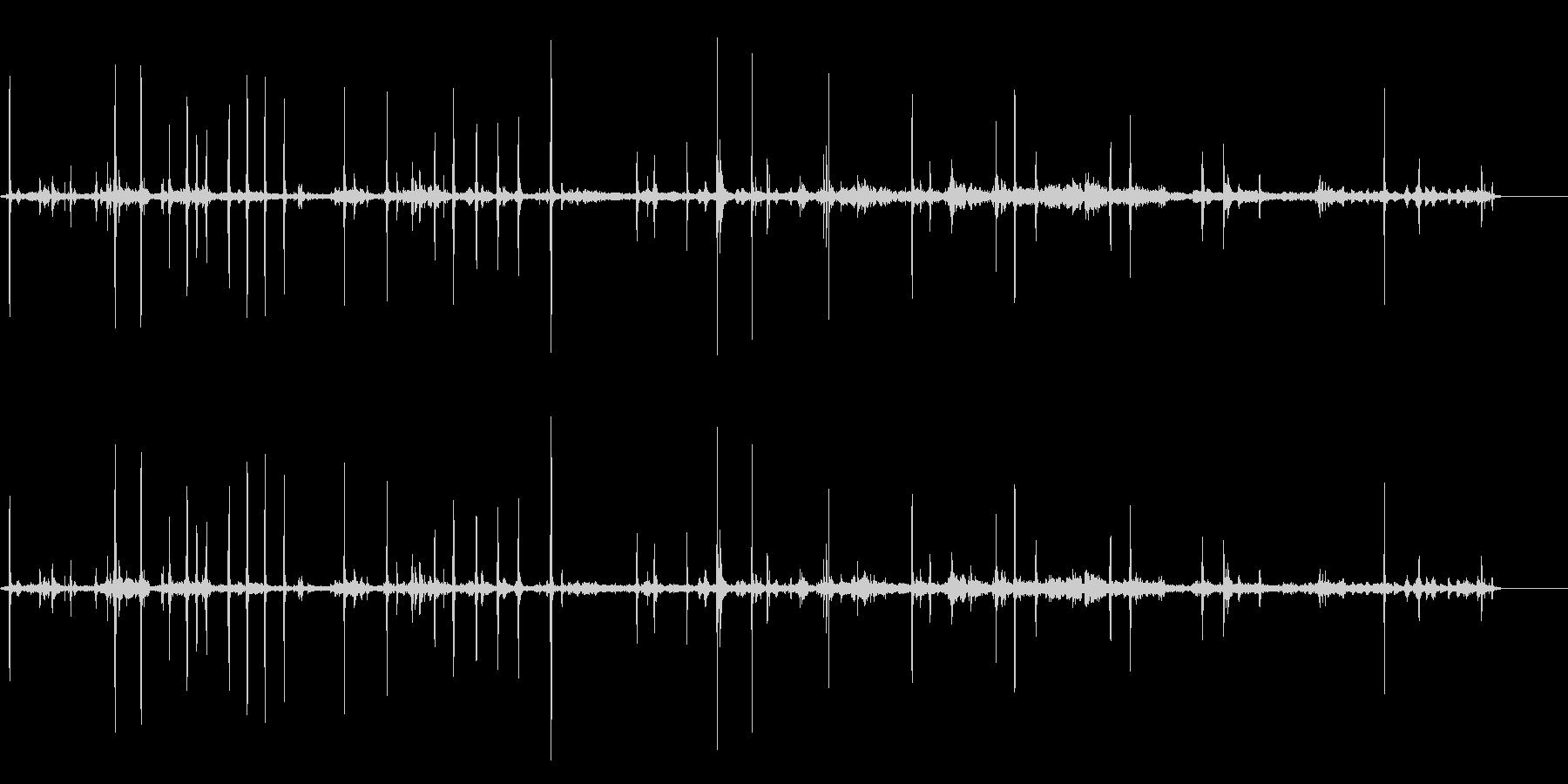 ペットケージ、ショップ、ラット、ク...の未再生の波形