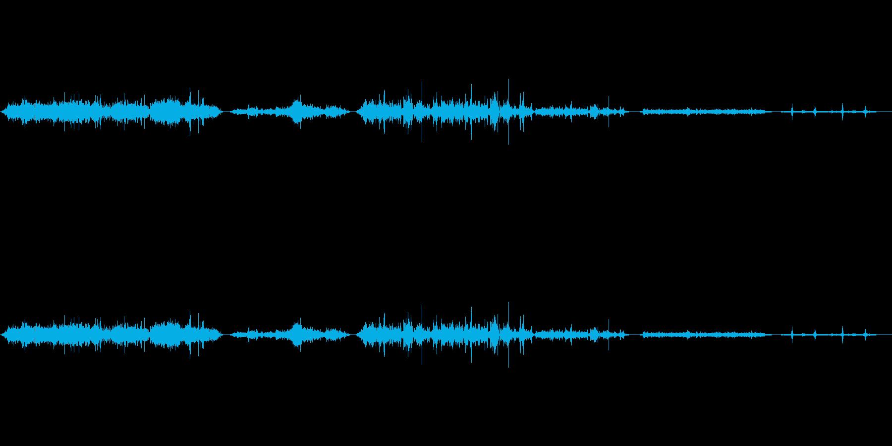 マルハナバチ蜂の再生済みの波形