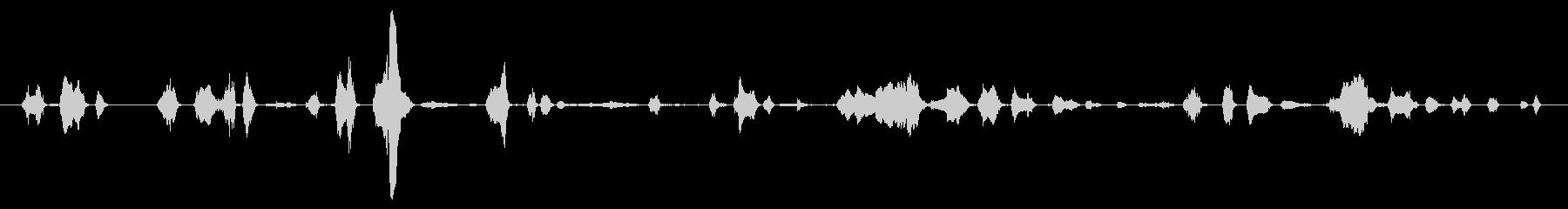 鳴き声 チャイルドラフティックル01の未再生の波形