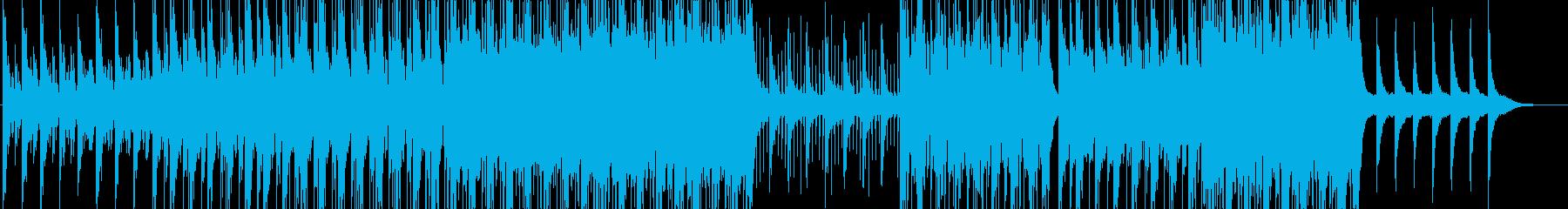 動画-PV-GoPro-SF-エレクトロの再生済みの波形