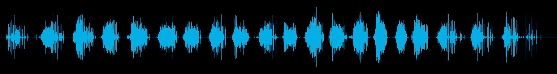 短いゴムの革のきしみの再生済みの波形