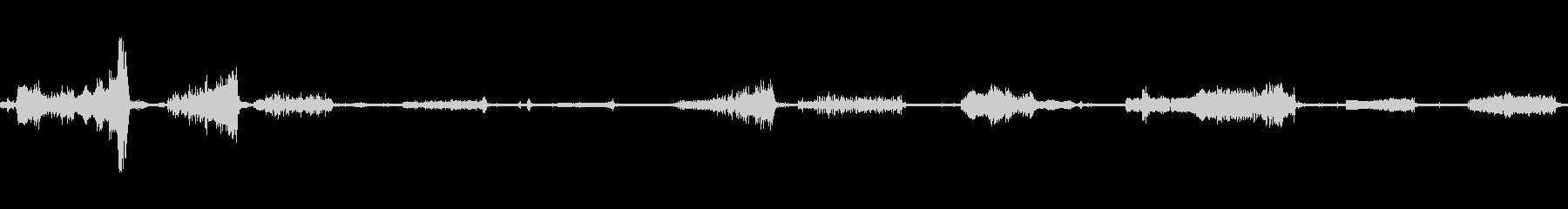 オウムの鳴き声、喉の音の未再生の波形