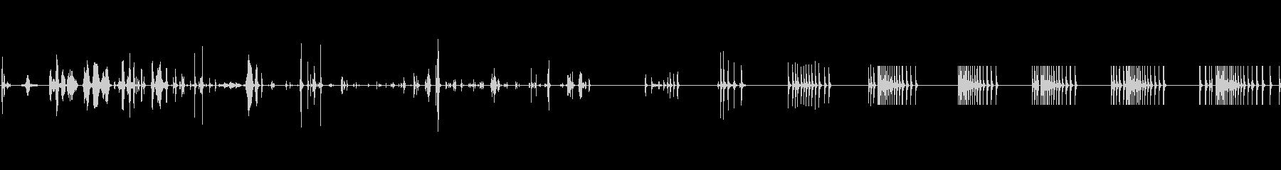 ブート:サウンドのセットアップとク...の未再生の波形