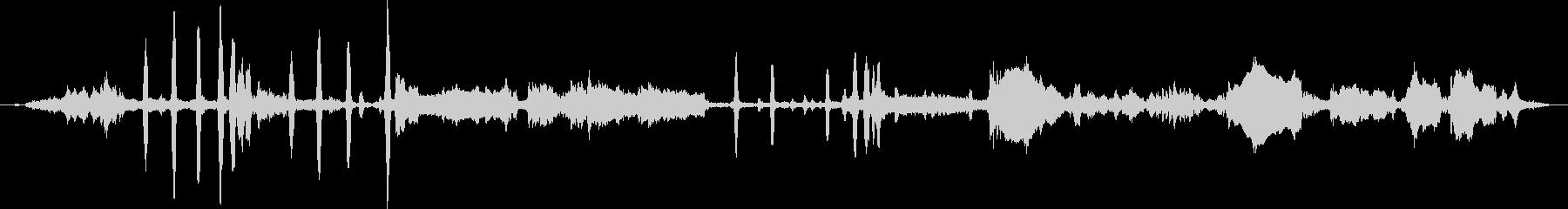 シベリアンハスキー:内線:大規模な...の未再生の波形