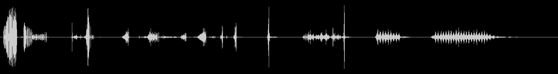 ロープクラックシングルクラックツイ...の未再生の波形
