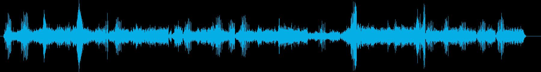 クジラ、灰色の呼び出し。複数の低音...の再生済みの波形