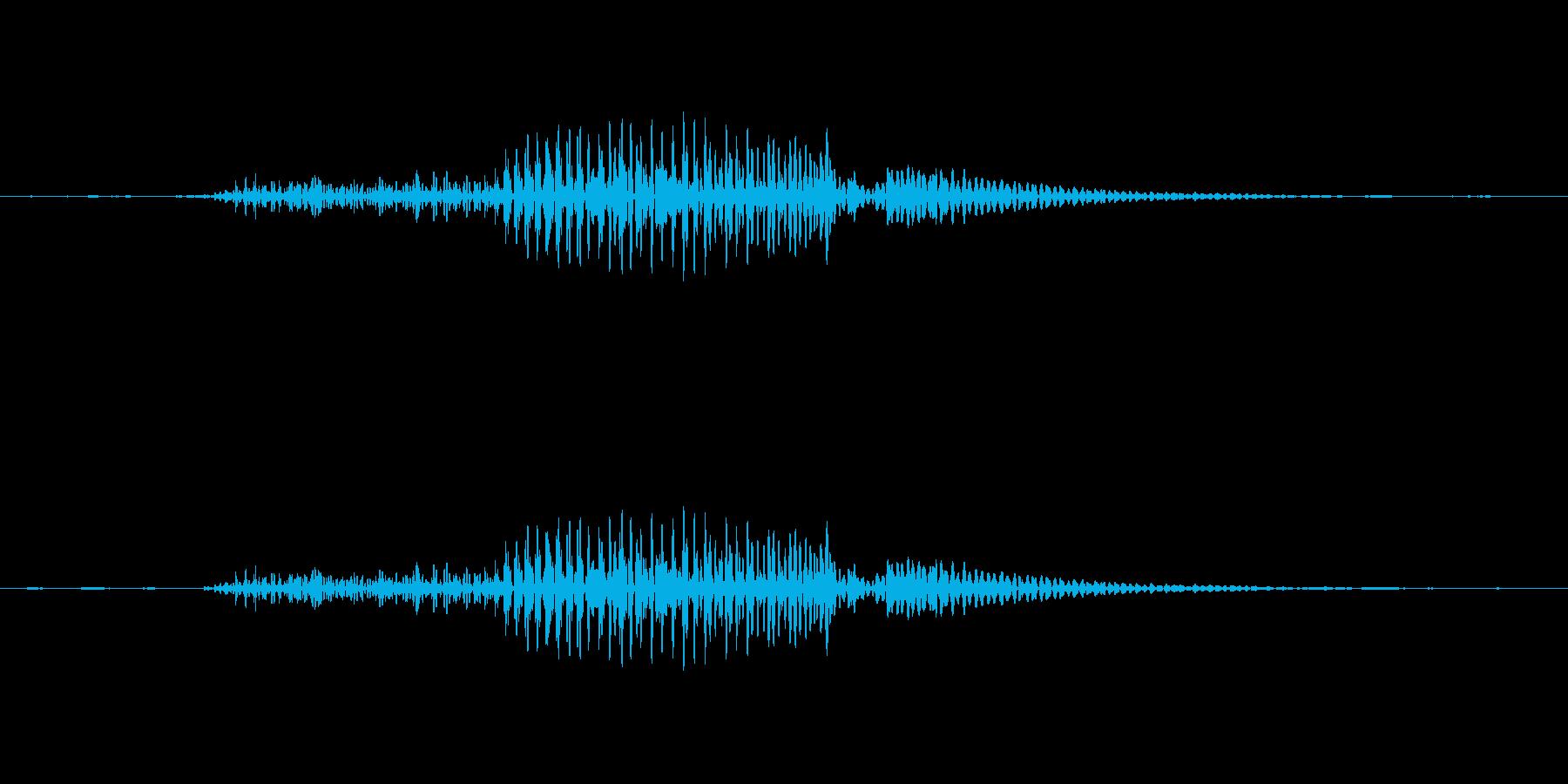 大人が咳払いした音です。の再生済みの波形