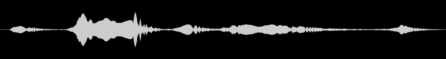 ドーベルマン犬のうめき声屋内の未再生の波形
