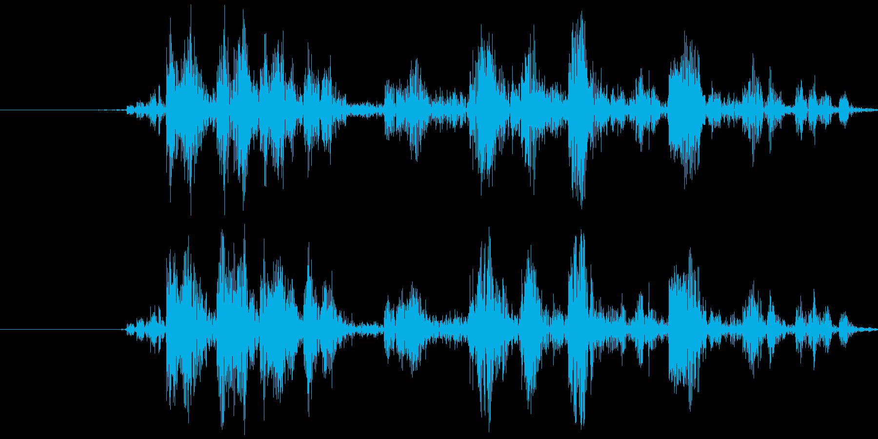 カメラ シャッター音(ノイジー)カシャの再生済みの波形