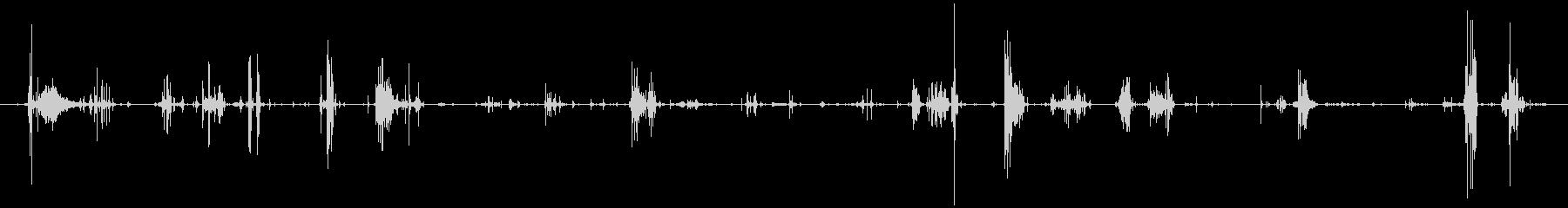 鳴き声 デスバーブルロング02の未再生の波形