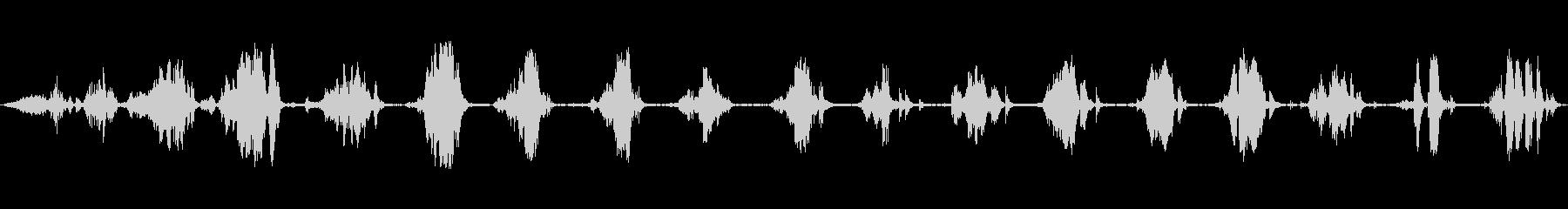 爆発風船;ヴィンテージ録音;ゴムと...の未再生の波形
