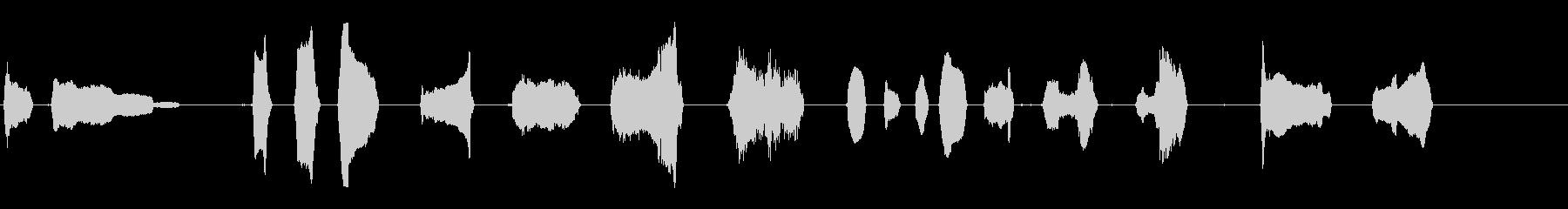 カモメ1の未再生の波形