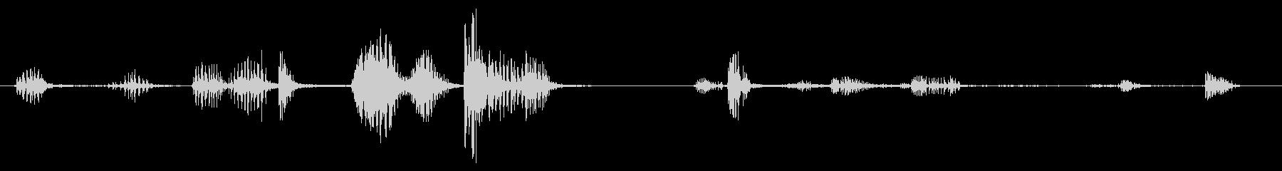 オウム:短いびびりの未再生の波形
