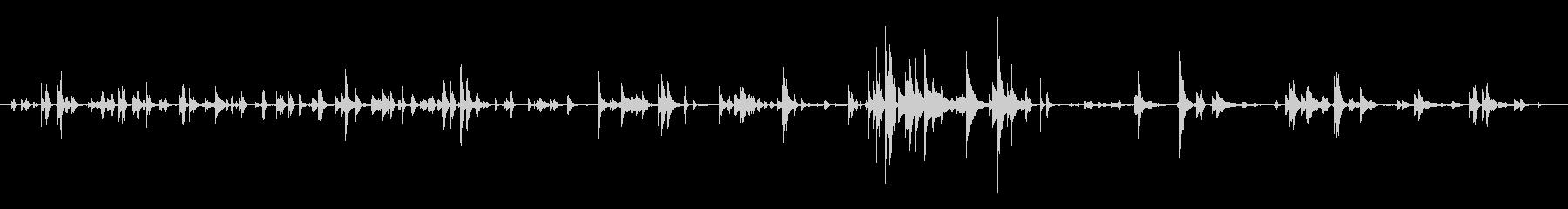 ロデオ、フォーリーの牛の牛の鐘の未再生の波形