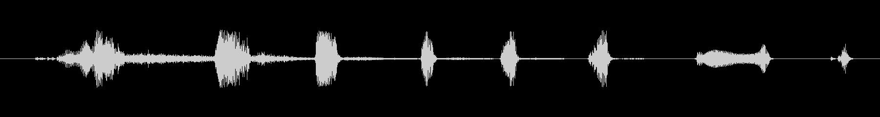 鳴き声 男性笑うブライト09の未再生の波形