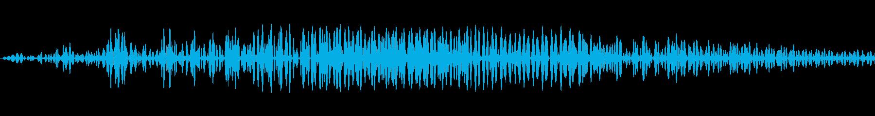 わん!!(犬が元気に吠える音。高め)の再生済みの波形
