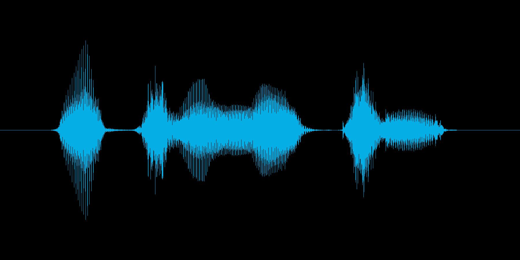 1月(1月・一月)の再生済みの波形